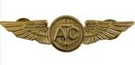 Regular Size Breast Badge: Aircrew