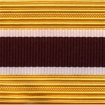 US Army Cap Braid with Specialty for Officer:  MEDICAL