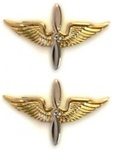 US Army Officer Branch Insignia 22K: Aviation