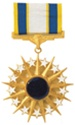 Full-Size Medal: Air Force Distinguished Service - USAF