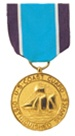 Full-Size Medal: Coast Guard Distinguished Service - USCG