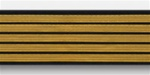 US Army Service Stripes For Female Blue Uniform: 5 Stripes