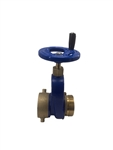 "2 1/2"" Brass Heavy Duty Fire Hydrant Gate Valve"