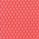 Farm Fun Strawberry Chicken Wire Yardage