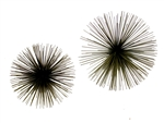 Curtis Jere  -original 1960's Urchin Spore wall sculpture set