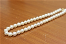 Necklace - Premium Quality 10mm Pinkish White