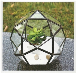 Geometric Glass Terrarium, Multi-Faceted