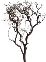 "Natural Red Manzanita Branches, 24"" Tall, case of four pieces(shipping included!)"