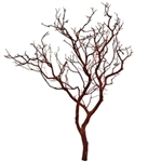 "Natural Red Manzanita Branches, 30"" Tall, case of four pieces (shipping included!)"