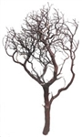 "Natural Red Manzanita Branches, 42"" Tall"