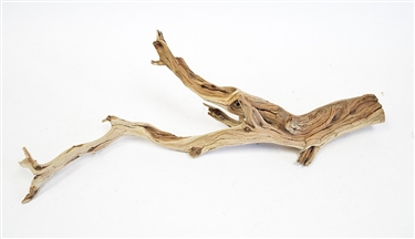 Sandblasted Ghostwood (California Driftwood), 10-12""