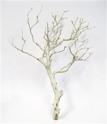 "Sandblasted Manzanita Branches, 14"" tall"