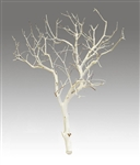 Sandblasted Manzanita Branches, 24 inches tall, case of four (shipping included!)