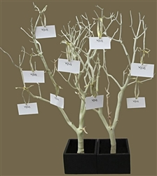 Sandblasted Manzanita Wish Tree Kit (shipping included!)