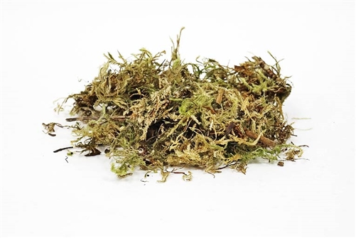 Sphagnum (Mountain) Moss - 16 OZ
