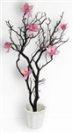 Natural Manzanita Branch Centerpiece Kit - SHIPPING INCLUDED!