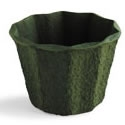 10 inch Green Mache Container