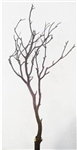 8 Natural Red Manzanita Filler Pieces, 24 inch (shipping included!)