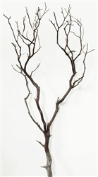 Natural Red Manzanita Filler Branch, 36""