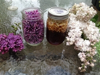 Making Lilac Honey