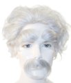 Albert Einstein Wig, Eyebrows & Moustache Set