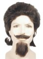 Wig, Mustache and Goatee Set