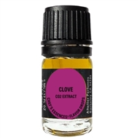 Clove Chef's Essence