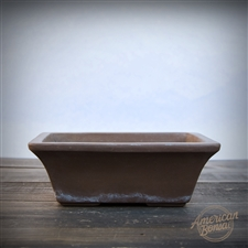 "International ""Cho"" Bonsai Pot"