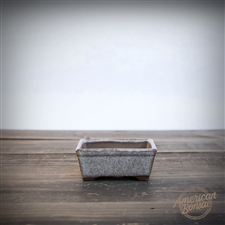 International Bonsai Pot