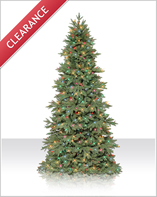 7.5 Foot Columbia Valley Slim Fir Christmas Tree with Multi Lights