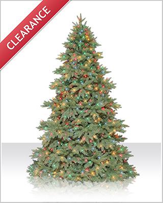 7.5 Foot Columbia Valley Fir Christmas Tree with Multi Lights