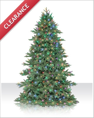 7 Foot Sequoia Fir Christmas Tree with Multi Mini Lights