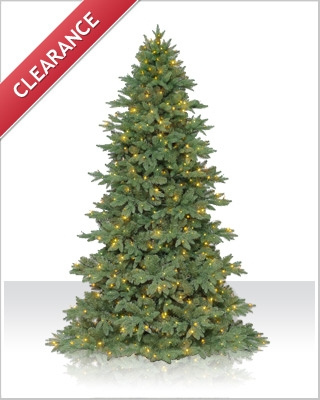 8 Foot Sequoia Fir Christmas Tree with Clear LED Mini Lights