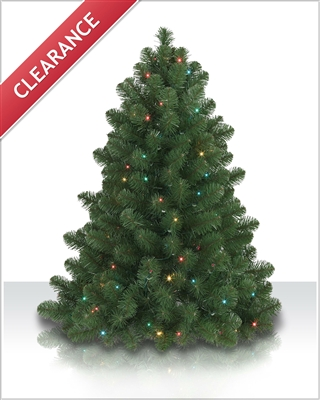 4 Foot Bethlehem Fir Tree with multi lights