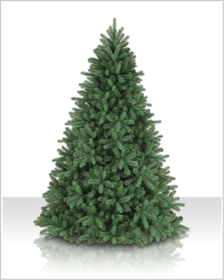 7.5 Foot Unlit Royal Douglas Fir Christmas Trees
