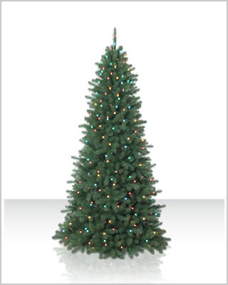 9 Foot Emerald Fir Christmas Tree with Multi Lights