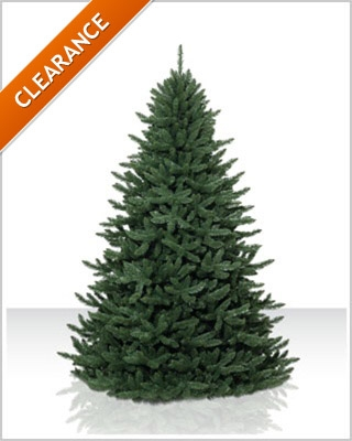 7 Foot Unlit Eastern Spruce Artificial Christmas Tree