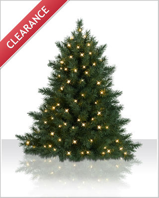 4 Foot Ashton Spruce Clear Christmas Tree