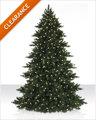 6.5 Foot Prelit LED Alexandria Pine Christmas Tree with Clear Lights