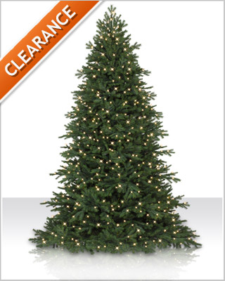 7 Foot Pre-Lit Norway Fir Christmas Tree with Clear Lights
