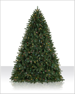 7.5 Foot Prelit Royal Douglas Fir Christmas Tree with Multi Lights