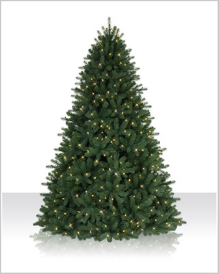 9 Foot Douglas Fir LED Christmas Tree with Clear Lights
