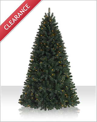 7 Foot Pre lit Northeastern Spruce Clear Prelit Christmas Tree