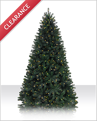 7 Foot Northeastern Spruce LED Christmas Tree with Clear Lights