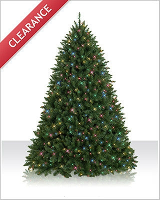 7.5 Foot Prelit  Connecticut River Pine Christmas Tree with Multi  Lights