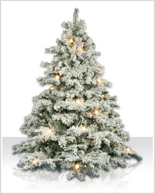 6.5 Foot Flocked Alaksan Artificial Christmas Tree