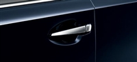 Lexus HS Plated Door Garnish Set