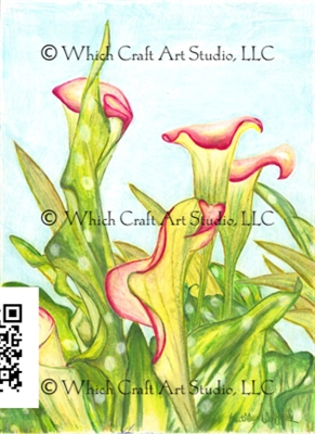 The Flowers Of Home Depot Series- Red Calla Lily