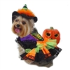 Colorful Halloween Witch Dog Costume