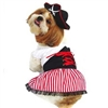 Pirate Girl Halloween Dog Costumes